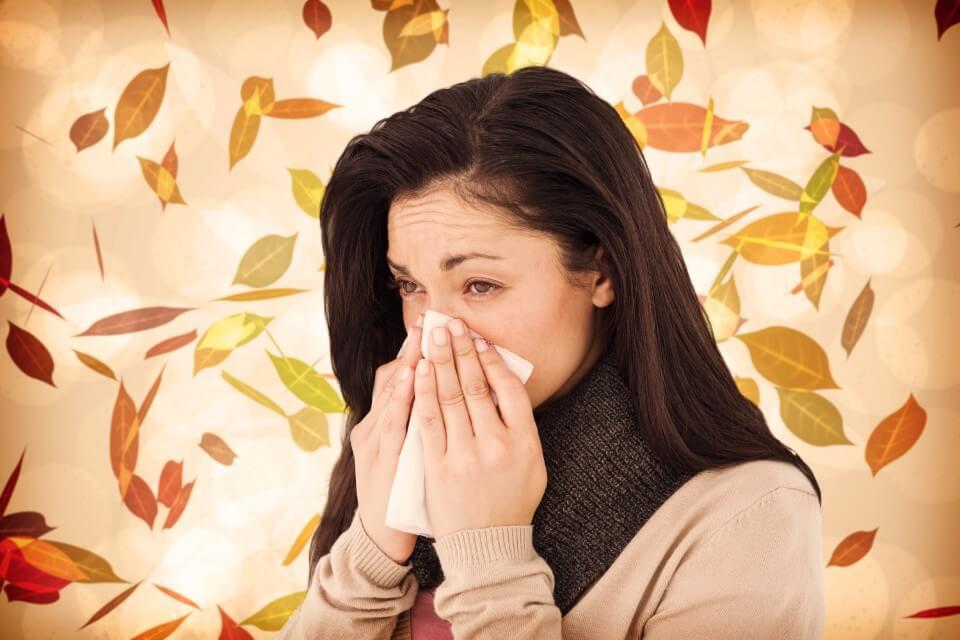 Post Allergy Season Cleaning