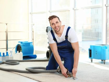 What To Expect During the Carpet Steam Cleaning Process